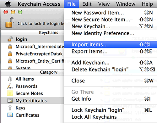 Mac OS Chrome Import Items Install Certificate