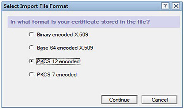 Select Import File Format